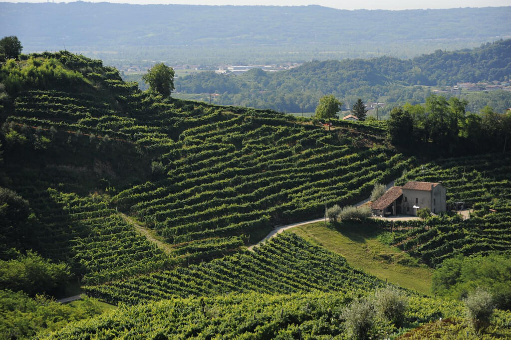 Places to visit in Italy Prosecco wine road