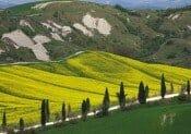Tuscany-landscape-DT-14